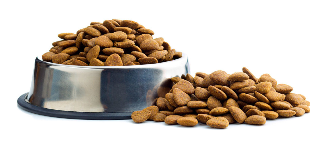 What's in your dog's favorite kibble?
