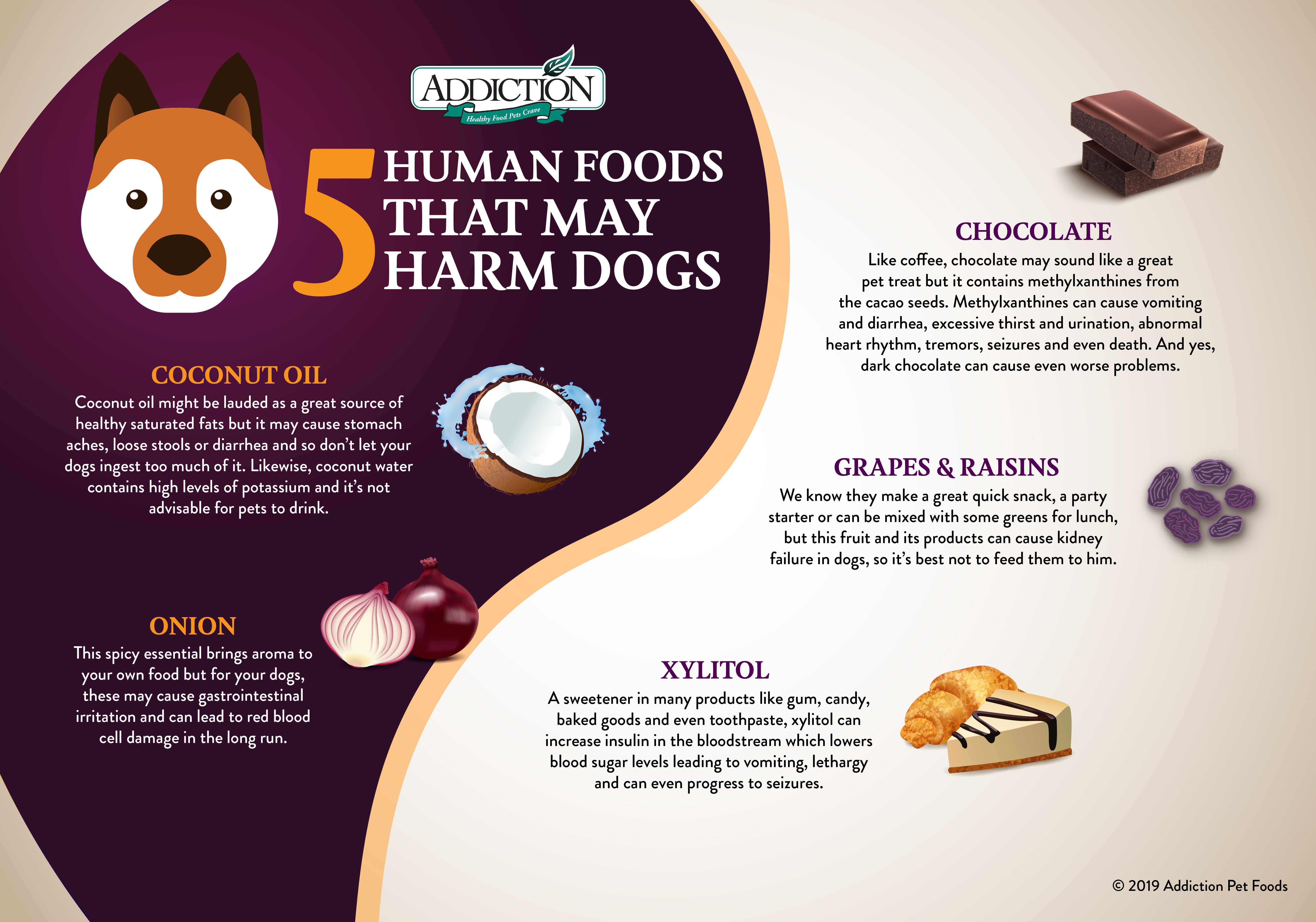 5 Human Foods That May Harm Dogs Addiction Foods